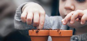 Video Seeding: Checkliste mit 9 Strategien für mehr Erfolg