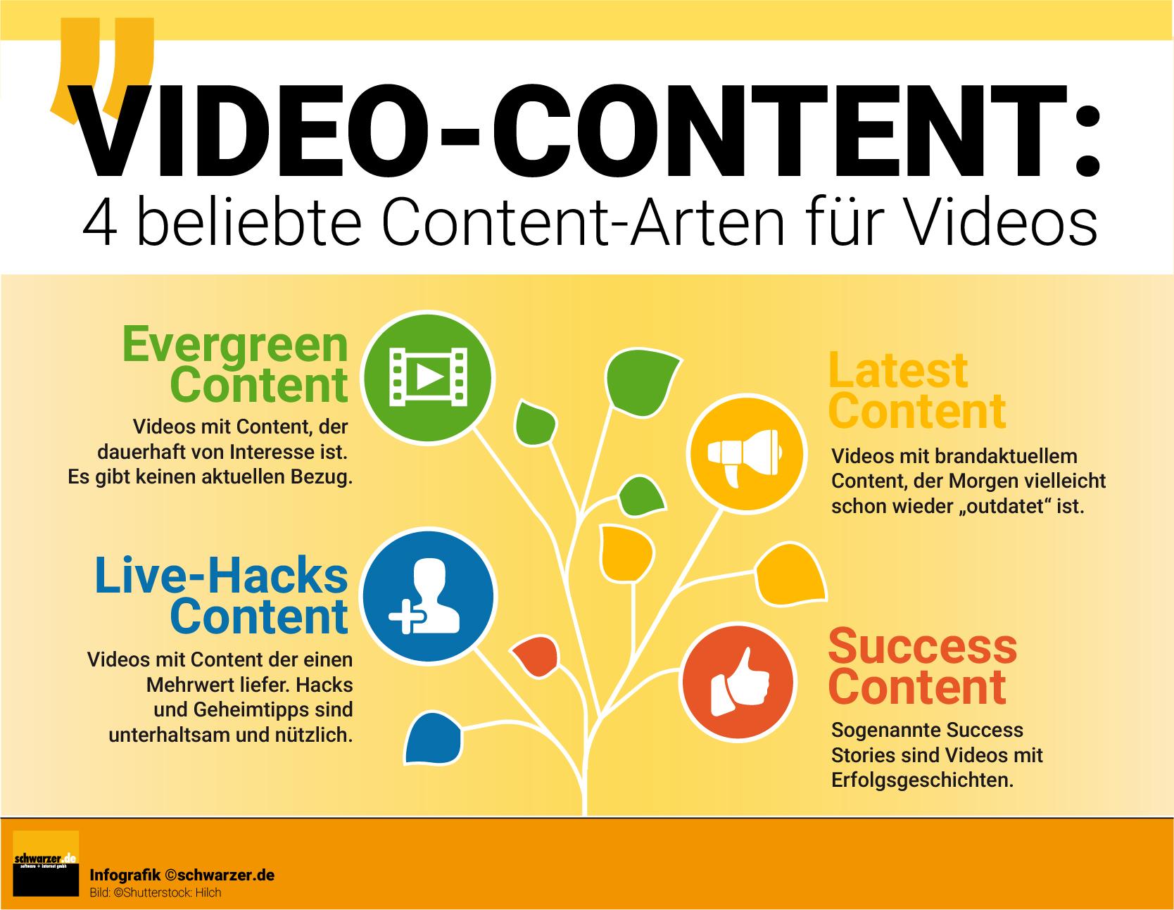 Infografik: Video Content - 4 beliebte Content-Arten für Videos.