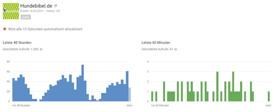 """Infografik: YouTube-Analytics """"Echtzeit"""" für YouTube-Clips auf dem YouTube-Channel """"Hundebibel"""". Die Timeslots sind jeweils ganze Stunden."""